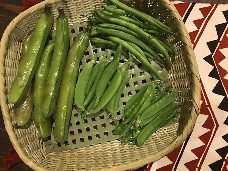6月19日(月)村岡奈弥の「料理上手になるためのヒント、五感が蘇る薬膳の知恵」